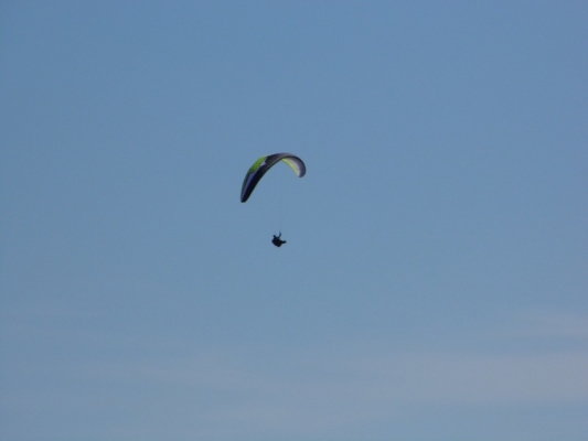 delta2-stelios-olympic-wings-06
