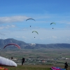 Olympic Wings Paragliding Holidays 111