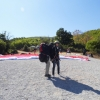 paragliding-holidays-olympic-wings-greece-270913-016