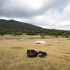 paragliding-holidays-olympic-wings-greece-tony-flint-uk-198