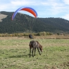 paragliding-holidays-mount-olympus-greece-goeppingen-175
