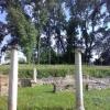 dion-artemis-temple
